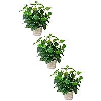 MedianField 【 観葉植物 造花 鉢 3個 セット 】 インテリア 雑貨 人工 フェイク グリーン 緑 植物 鉢植え 葉 (鉢×3)