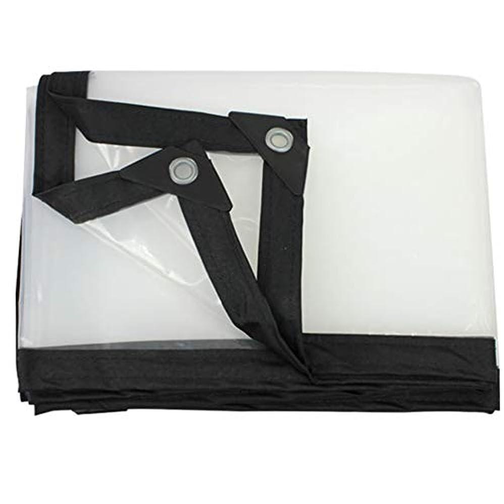 結婚式ナインへ制限SHYPwM 透明な防水シート肥厚防雨布防水プラスチックシート窓バルコニークロップターポリンシェード布 (サイズ さいず : 5X6m)