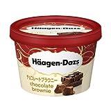 【ハーゲンダッツアイスクリーム】 ミニカップ チョコレートブラウニー 6個