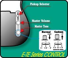 EDWARDS E-TE-100M/LT ラッカーテイステッドシリーズ メイプル指板