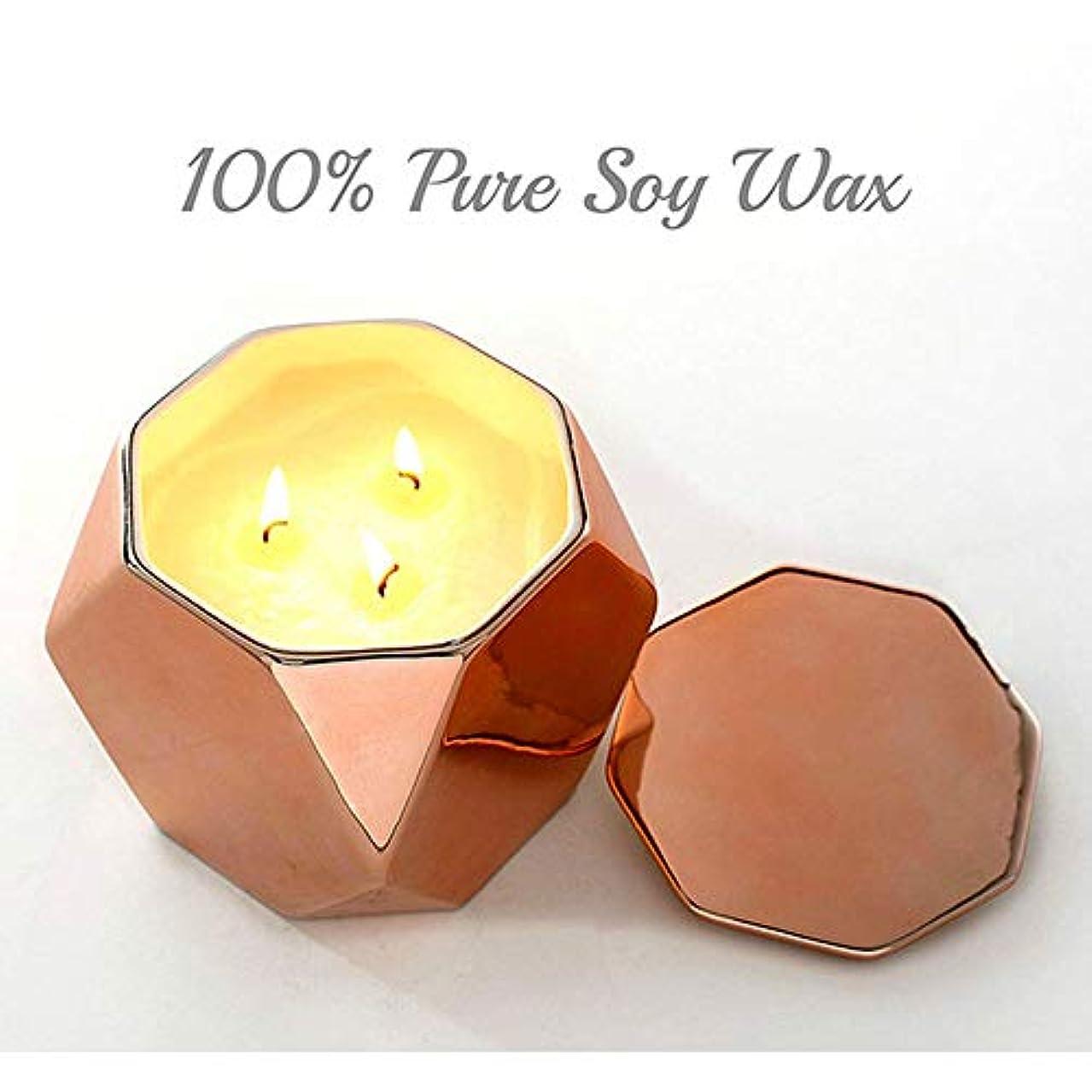 通知する形容詞我慢する27Oz特大の缶3つの中心の香料入りの蝋燭の環境に優しい植物の精油の大豆のワックスの無煙蝋燭(5箱)