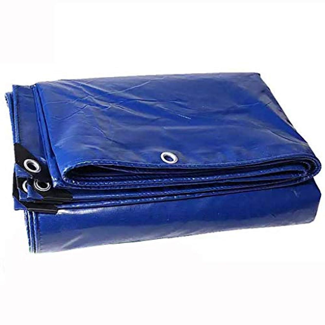芸術苦しめる椅子アウトドア 防水シートオーニングキャノピートラック防水シートハイバーセミトレーラー防水シート防水日焼け止めPVC防水シート高品質耐摩耗性 テント (Color : Blue, Size : 500*700cm)