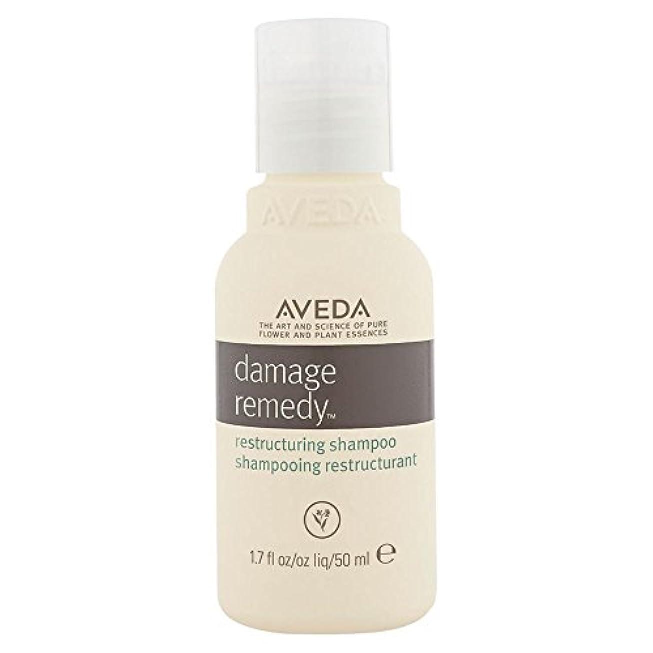 シャックル割り当て神秘的な[AVEDA] アヴェダダメージ救済再編シャンプー - Aveda Damage Remedy Restructuring Shampoo [並行輸入品]