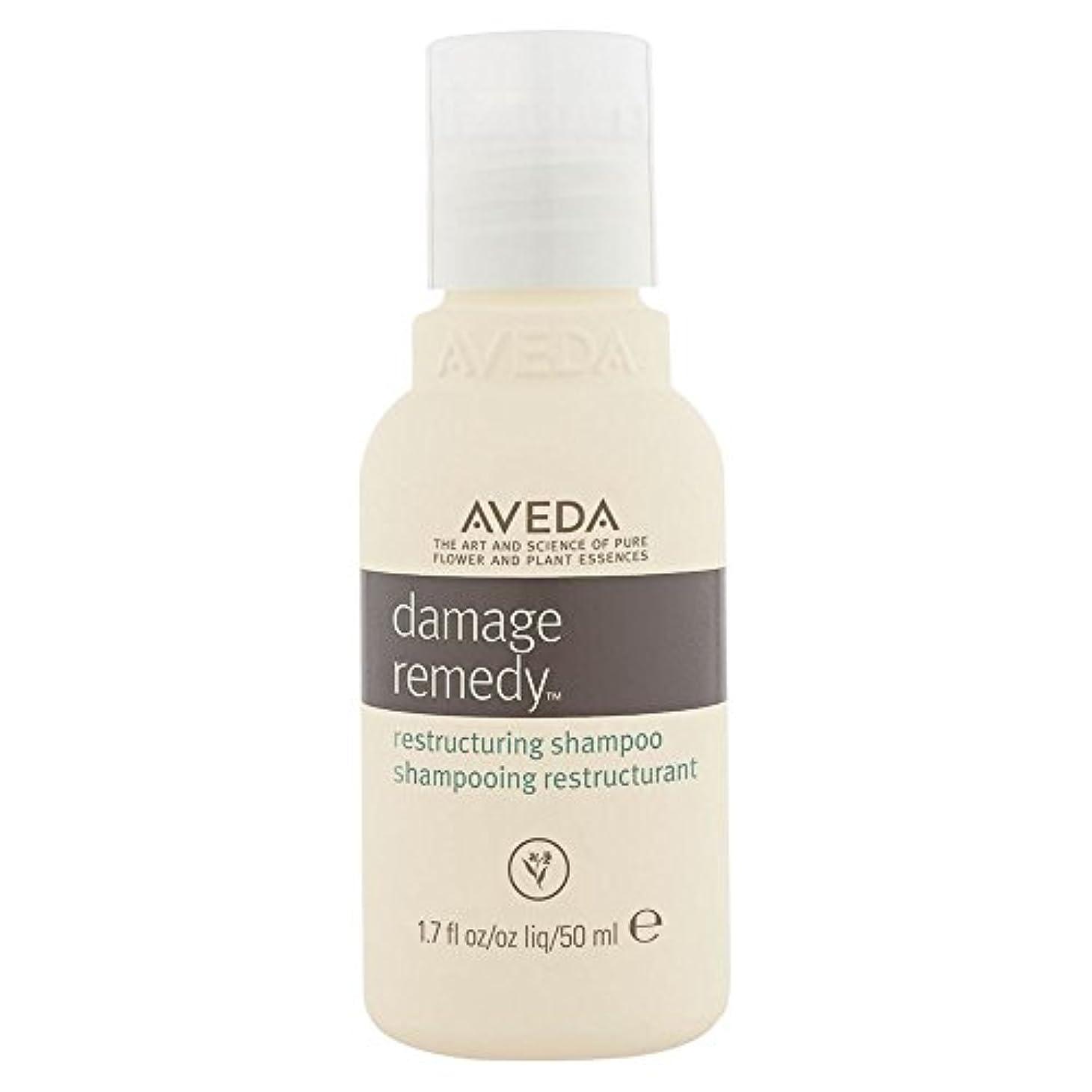 香水枯渇困惑[AVEDA] アヴェダダメージ救済再編シャンプー - Aveda Damage Remedy Restructuring Shampoo [並行輸入品]