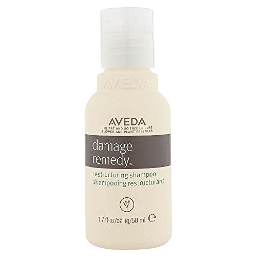 偽造フェンス気性[AVEDA] アヴェダダメージ救済再編シャンプー - Aveda Damage Remedy Restructuring Shampoo [並行輸入品]