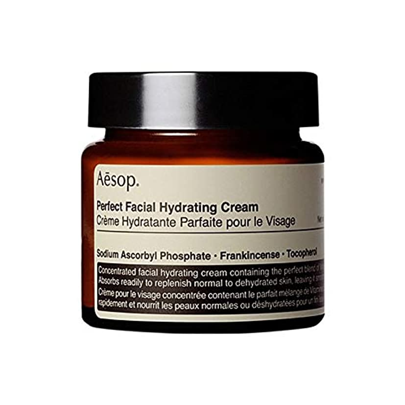 実用的アナリスト普通に[Aesop] イソップ完璧な顔の水和クリーム60ミリリットル - Aesop Perfect Facial Hydrating Cream 60ml [並行輸入品]