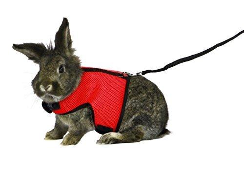 ASOCEA ウサギ 猫 ハーネス リード 調整可能 小動物用(赤色)