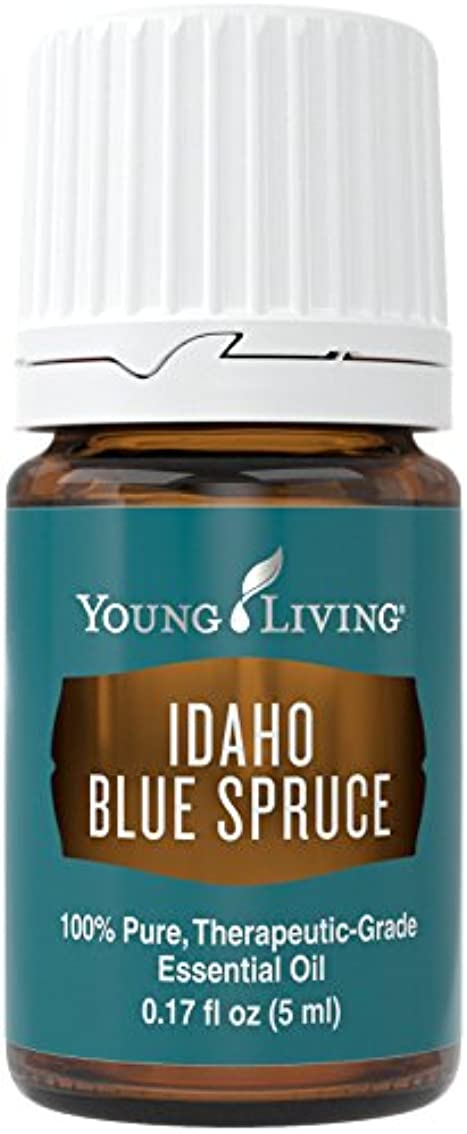 まっすぐ私達ご飯Young Living アイダホブルースプルースエッセンシャル?オイル5ミリリットルエッセンシャルオイル