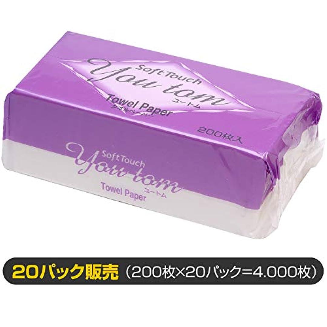 体細胞北東赤道ペーパータオル ユートム/20パック販売(清潔キレイ館/レギュラーサイズ用)
