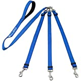 Wellbro 3 in 1 Durable Nylon Dog Leash with Padded Handle, Three- Way Pet Leash with a Coupler, Adjustable and Detachable, Lead for Small, Medium Dogs (Blue)