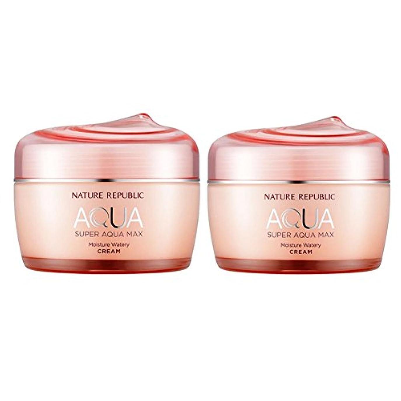 改修遠洋のびっくりしたネイチャーリパブリックスーパーアクア?マックスモイスチャー水分クリーム乾性用肌80ml x 2本セット、韓国化粧品 Nature Republic Super Aqua Max Moisture Cream Dry Skin, 80ml x 2ea, Korean Cosmetics [並行輸入品]