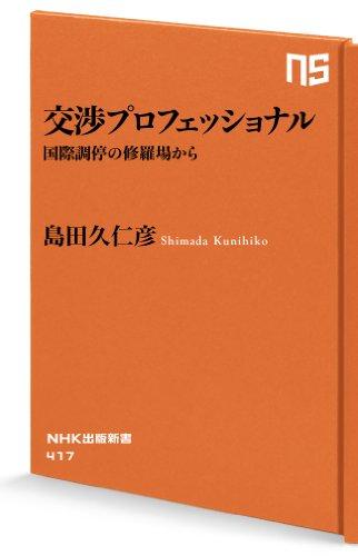 交渉プロフェッショナル 国際調停の修羅場から (NHK出版新書)の詳細を見る