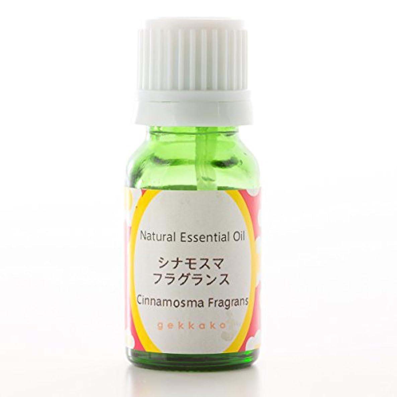 好色なすぐに抑制する<月下香>エッセンシャルオイル/アロマ/シナモマス フラグランス【5ml】 (5ml)