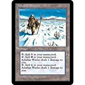 Adarkar Wastes (Magic the Gathering : Ice Age Rare) by Wizards of the Coast [並行輸入品]