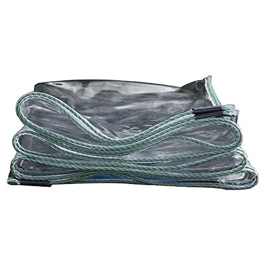 勝つ平方専門化するWJ タープ- 透明防水シートバルコニー防水シート厚い透明プラスチック布柔らかい布pvc防水シート、20サイズ /-/ (Size : 3mX4m)