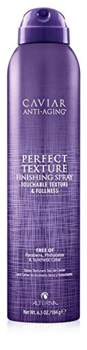 適用する鋸歯状ペイントAlterna Caviar Perfect Texture Finishing Spray 220ml