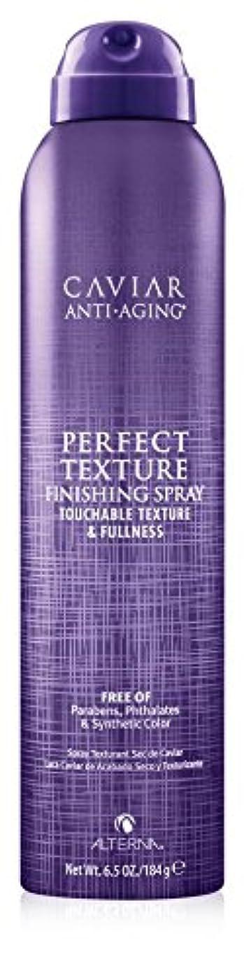 前文完璧ハンバーガーAlterna Caviar Perfect Texture Finishing Spray 220ml