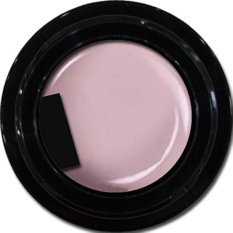 既に惑星篭カラージェル enchant color gel M503 Wisteria 3g/ マットカラージェル M503 ウィステリア 3グラム