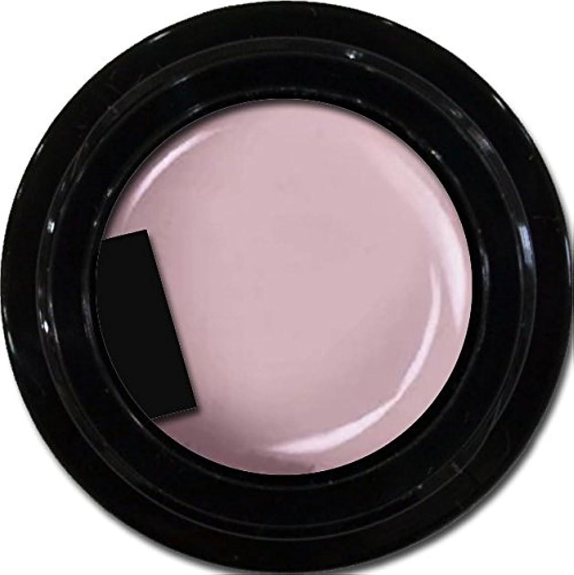 ドット運河優れたカラージェル enchant color gel M503 Wisteria 3g/ マットカラージェル M503 ウィステリア 3グラム