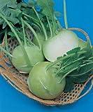 【コールラビ種子】 グランデューク (タキイ種苗) 20ml