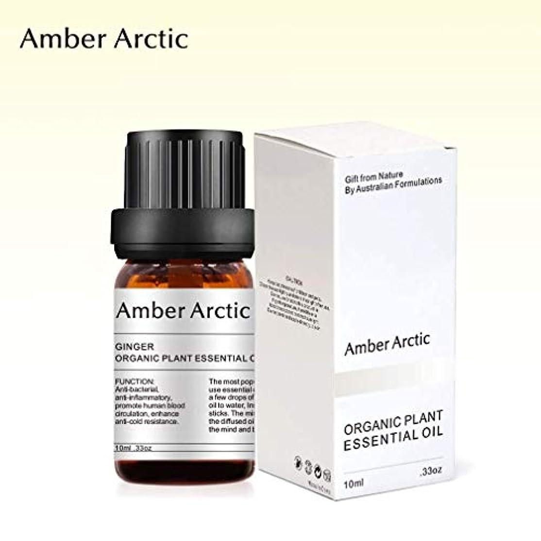 リップ期間憧れAmber Arctic ショウガ 精油、 ディフューザ 100% 純粋 天然 アロマ エッセンシャル オイル (10ml) 中