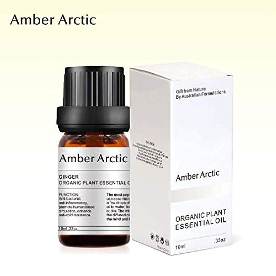 愚かな道路を作るプロセス首Amber Arctic ショウガ 精油、 ディフューザ 100% 純粋 天然 アロマ エッセンシャル オイル (10ml) 中