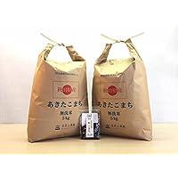 新米【精米】秋田県産 農家直送 無洗米あきたこまち 子どもに食べさせたいお米 10kg (5kg×2袋) 平成30年産 古代米付き