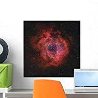 Rosette Nebula Wall Mural by Wallmonkeys Peel and Stick Graphic (18 in H x 18 in W) WM155241 [並行輸入品]