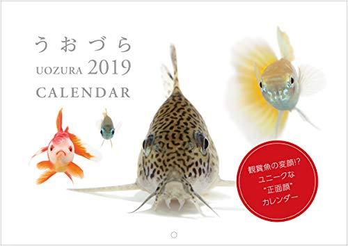 カレンダー うおづら/UOZURA 2019