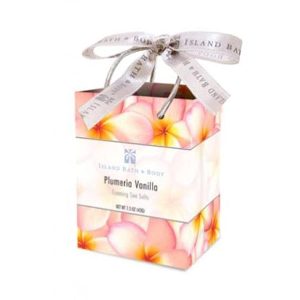 アカデミック一生窒息させるミネラルソルト/Plumeria Vanilla