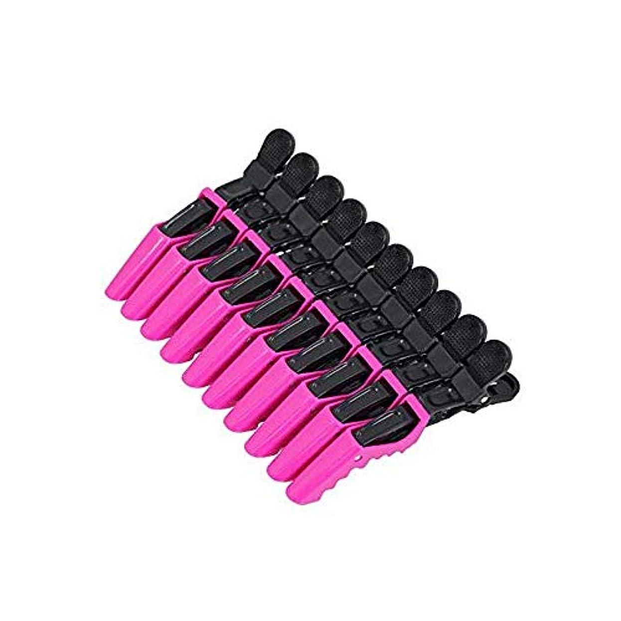 乳白色南東応援する10個セット ワニ口クリップ 美容ヘアクリップ 美容ツール 固定ヘアクリップ デザイナーヘアクリップ 調整可能 ブラックピンク
