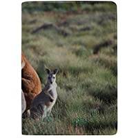 Many Kangaroo Closeup with Hills Blocking Print Passport Holder Cover Case Travel Luggage Passport Wallet Card Holder Made with Leather for Men Women Kids Family
