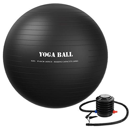 Homitt バランスボール 65cm ヨガボールセット アンチバースト仕様 エクササイズ用 空気入れポンプ付き ジム/家/オフィスなどに適用 ブラック