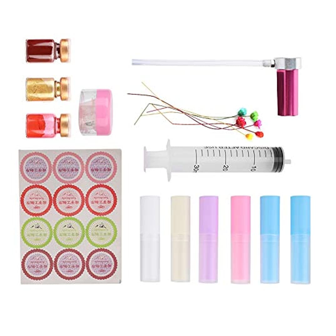 比較的キャンドルギャングDiyリップクリームクラフトキット、プロの口紅金型自家製リップクリーム工芸ツールで透明ゼリーワックス口紅容器