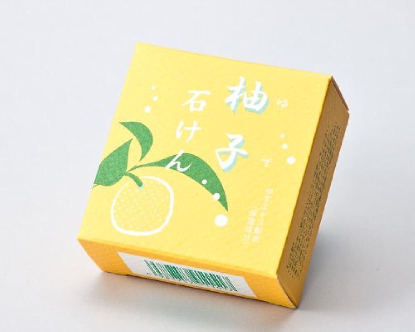 野菜受賞魅惑的な地の塩社 和の美肌石けん(ゆず)100g