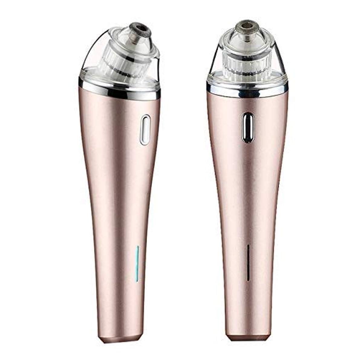 知恵カラス驚電気にきび楽器多機能ホーム顔の毛穴クリーニング美容機器usb充電式にきび真空抽出器、ピンク (Color : Gold)