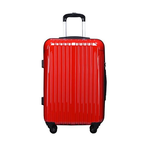 ラッキーパンダ スーツケース TY001 TS...の紹介画像2