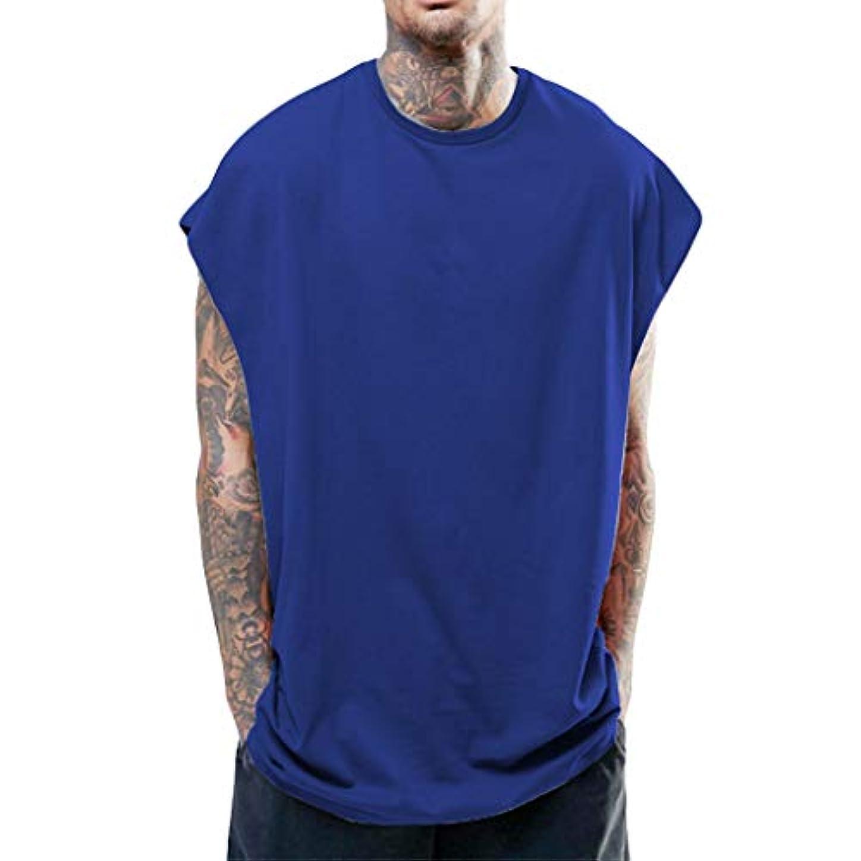 栄光活気づける証明するメンズ無地ベスト タンクトップ メンズ tシャツ夏 トップス カットソー ノースリーブ ゆったり ビッグシルエット 吸汗速乾 無地 お出かけ 男性 背心 簡単 ジム 運動 (S-XXL)