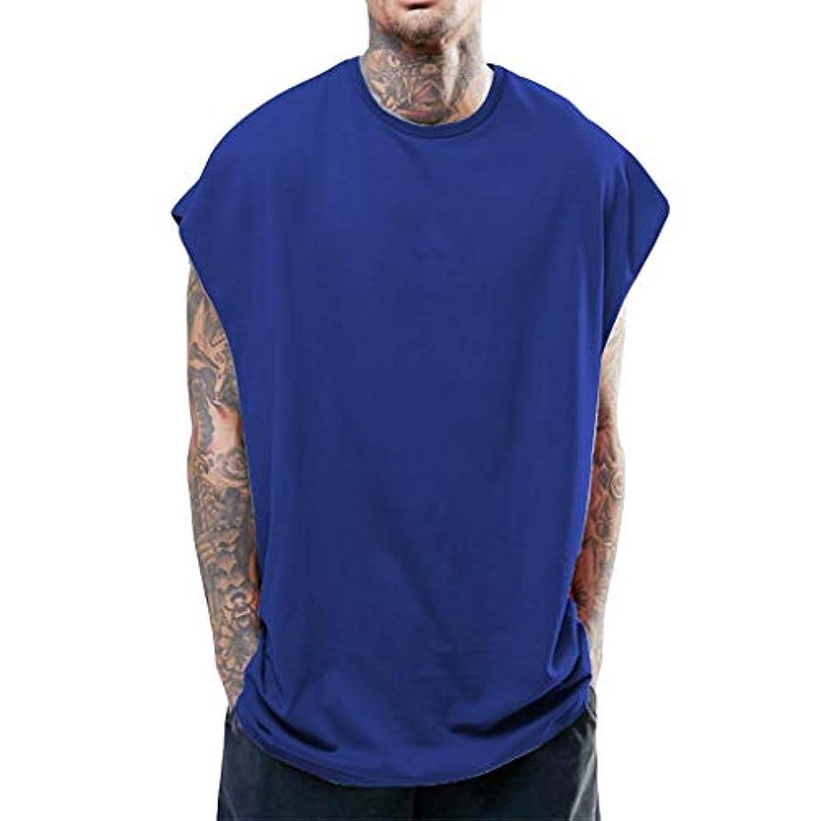 純粋に編集する文明化メンズ無地ベスト タンクトップ メンズ tシャツ夏 トップス カットソー ノースリーブ ゆったり ビッグシルエット 吸汗速乾 無地 お出かけ 男性 背心 簡単 ジム 運動 (S-XXL)