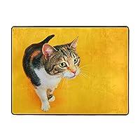 Qilebaihuo 玄関マット動物 猫 面白い ネコドアマット 足ふきマット吸水 洗える 滑り止め付き 屋内 屋外 120×160cm