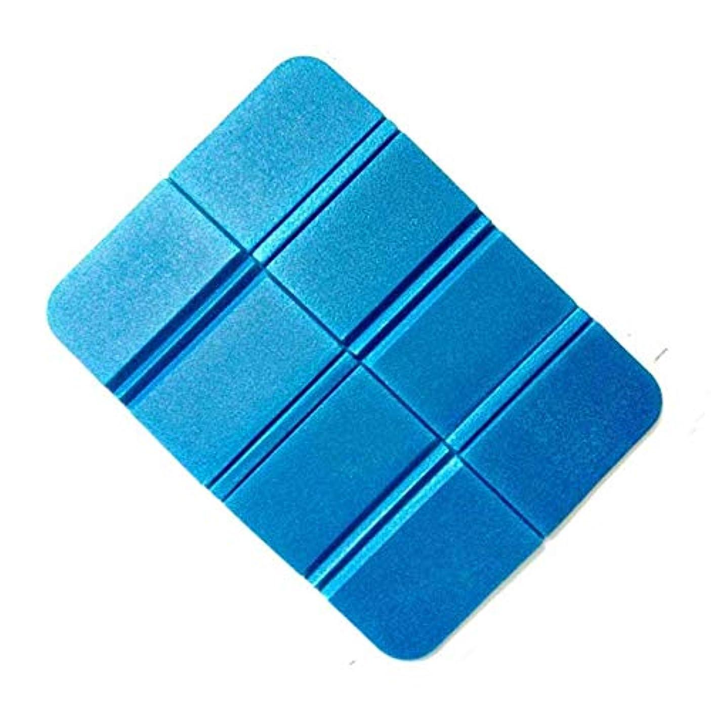 間違い比較的ヒロイックAmyou 8倍のポケットサイズのピクニック折りたたみシートクッションフォーマットマットモイスチャーショープービーチェアパッド