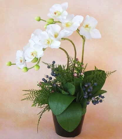山久 胡蝶蘭 と ベリー のこぶりなアレンジ ホワイトクリー...