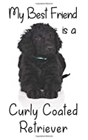 """My best Friend is a Curly Coated Retriever: 8"""" x 5"""" Blank lined Journal Notebook 120 College Ruled Pages (Best Friends)"""