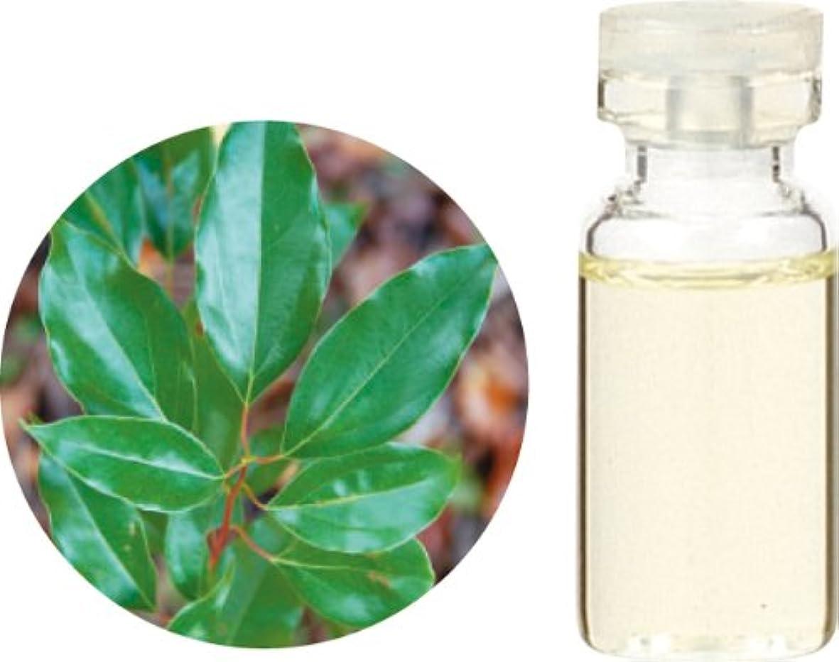 つばコンプライアンス塩辛い生活の木 ホーリーフ 10ml