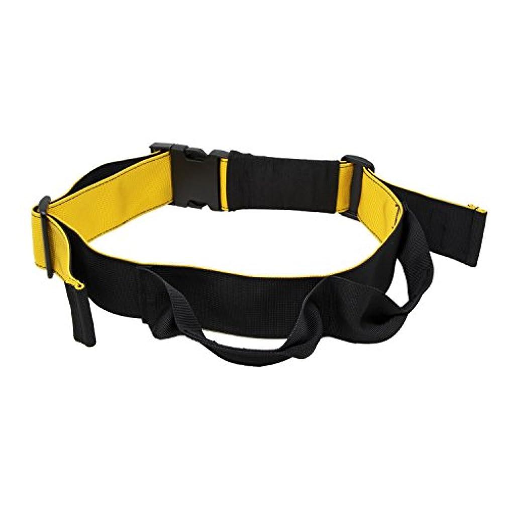ランダム文薄い(トレックス) trexx ドラゴンフラッグ ベルト 腹筋 トレーニング フラットベンチ トレーニングベンチ 汎用 ベルト