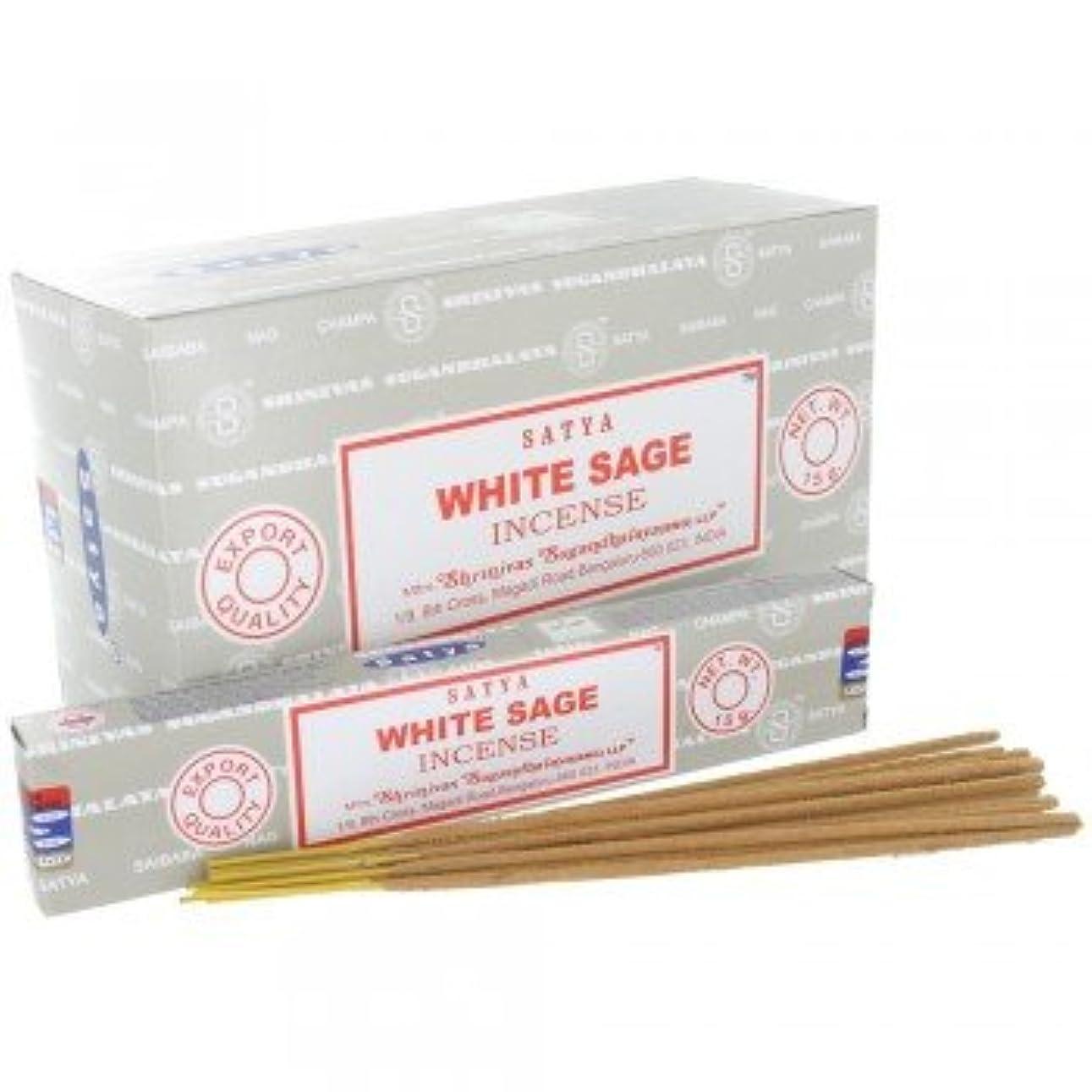 矩形シットコム急いでSATYA WHITE SAGE ホワイトセージ 聖なる樹 浄化 お香 スティック 約15g入 (1個) [並行輸入品]