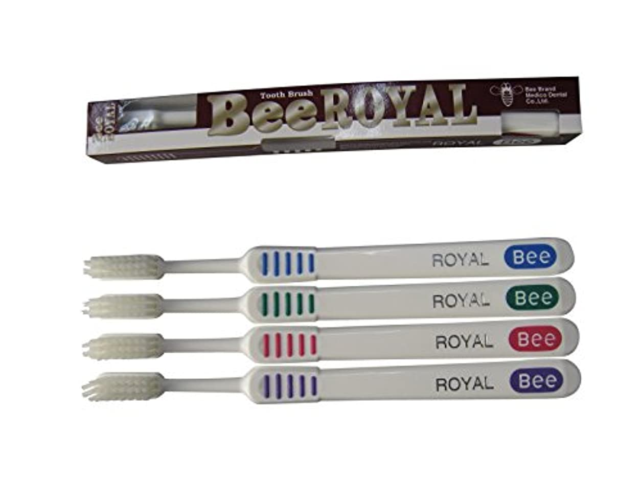 スイス人外出傾向があるドクタービー 歯ブラシ ビーブランド ドクタービーロイヤル ふつう 4色アソート 20本入り