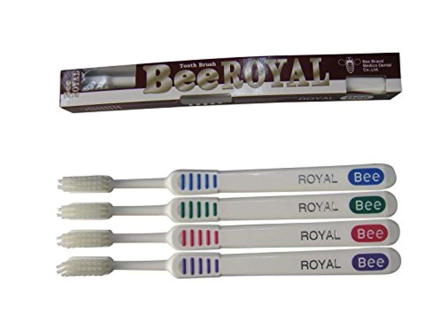 反対うま巨大なドクタービー 歯ブラシ ビーブランド ドクタービーロイヤル ふつう 4色アソート 20本入り