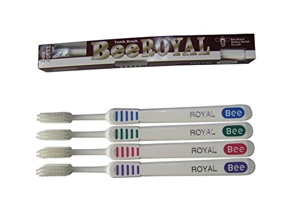 レビュアーバンガロー吐くドクタービー 歯ブラシ ビーブランド ドクタービーロイヤル ふつう 4色アソート 20本入り