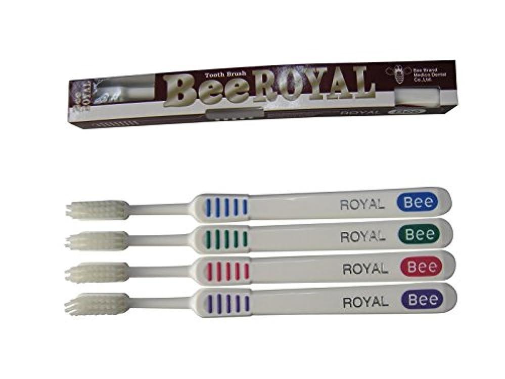 の面では微生物倉庫ドクタービー 歯ブラシ ビーブランド ドクタービーロイヤル ふつう 4色アソート 20本入り